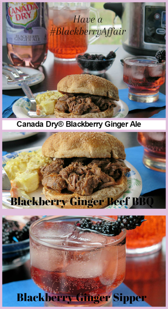 #BlackberryAffair Canada Dry® Blackberry Ginger Ale